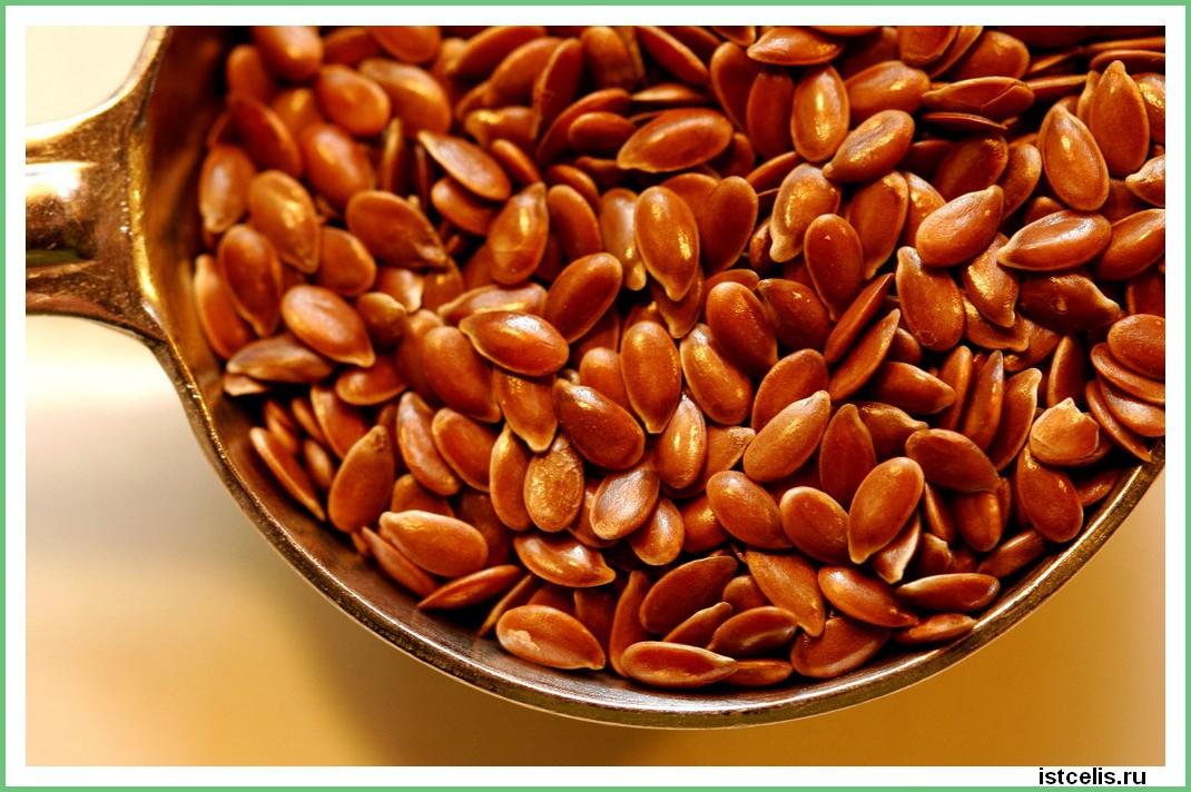 semena lna 1 - Нетрадиционное лечение рака. Истории исцеления